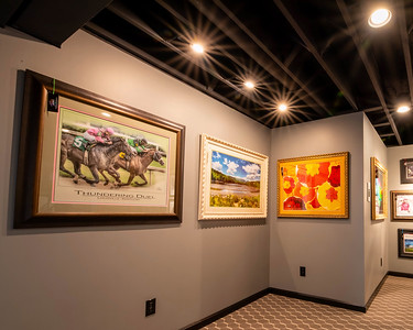 Private Gallery Photos for Display