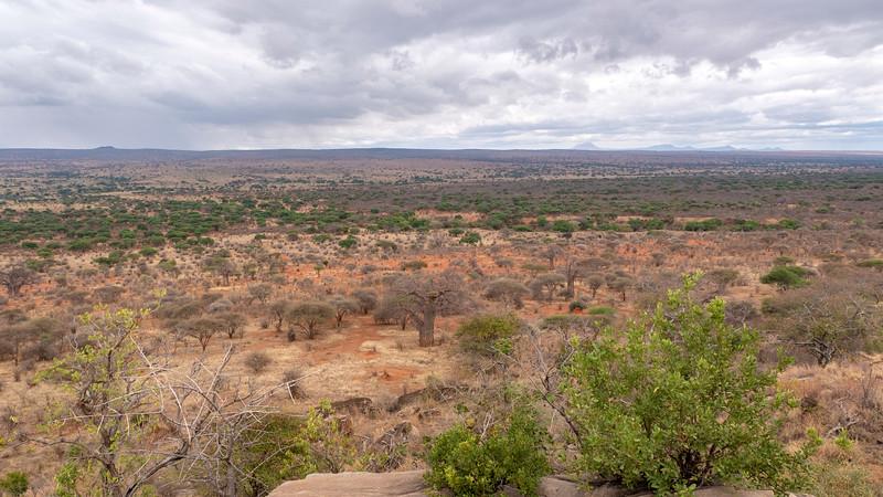 Tanzania-Tarangire-National-Park-Lemala-Mpingo-Ridge-33.jpg