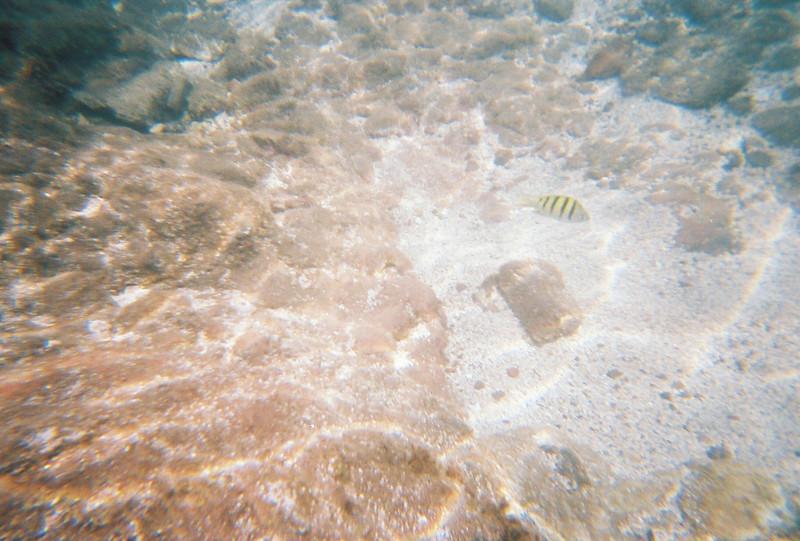Hawaii-260.jpg