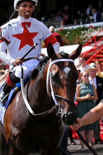 Mitole (Eskendereya) and jockey Ricardo Santana, Jr. win the Forego (Gr I) at Saratoga Racecourse 8/24/19. Trainer: Steve Asmussen. Owner: Corrine Heiligbrodt & L. William Heiligbrodt