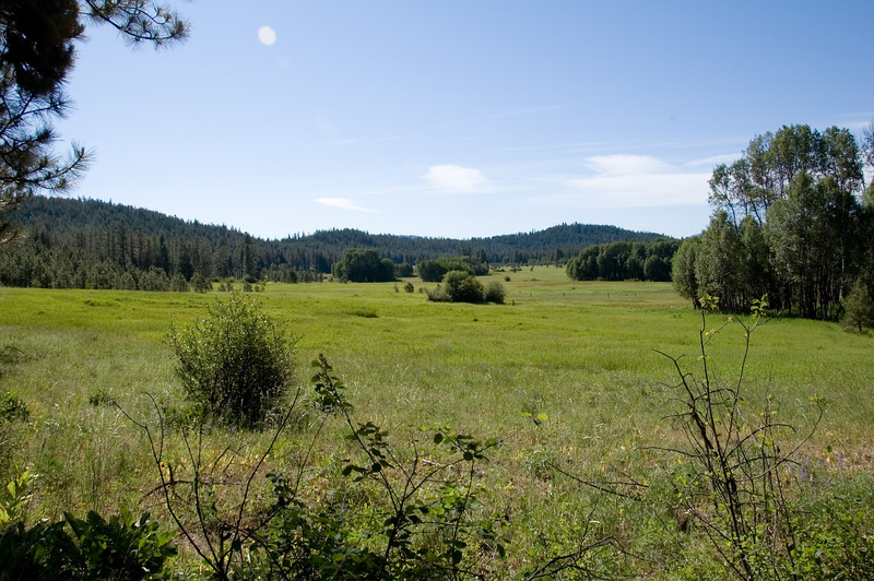 Camas Meadow outside Cashmere