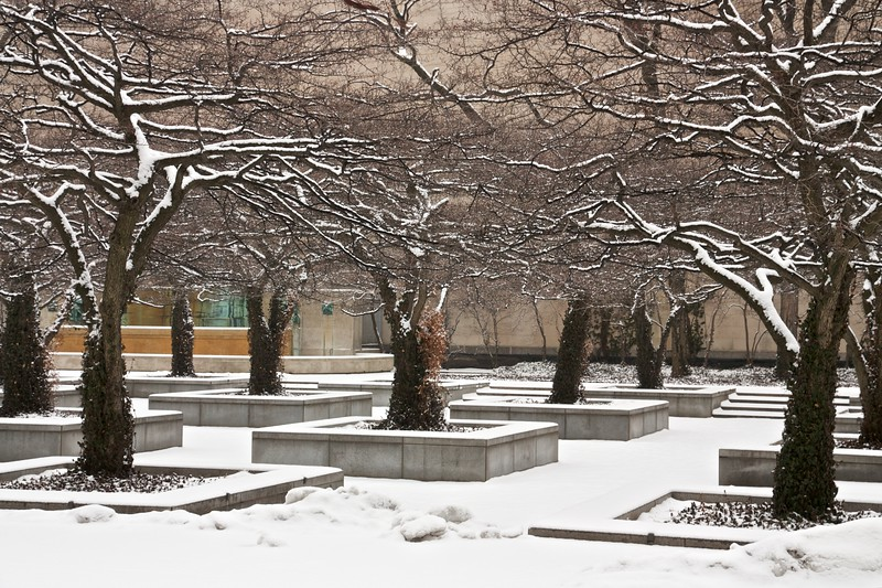 Art Institute Garden in winter. Chicago, Illinois.