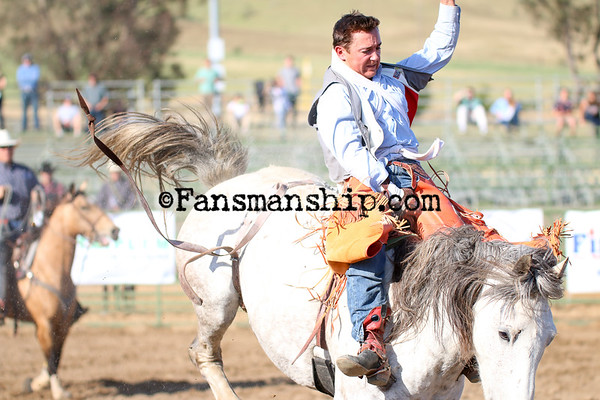Poly Royal Rodeo 2015