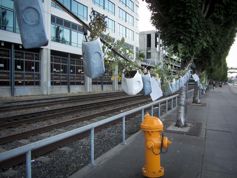 Seattle 201208 Downtown (1a).jpg