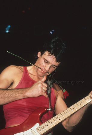 Rick Springfield Photographed Live in Concert 1980s by Laurie Paladino