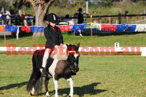 2012 08 26 Kelmscott Pony Club Dressage ShowJumping and In Hand