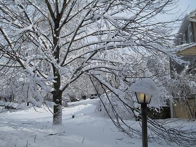 January 27, 2011 - Heavy Weather
