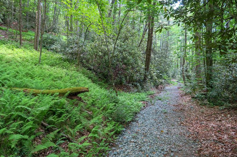 Riverside Trail -- 2,320'