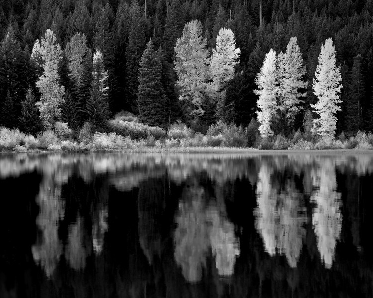 Monochrome  landscapes