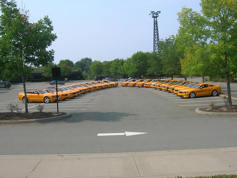 24 Grabber Orange Mustangs