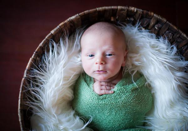 Jett--Newborn