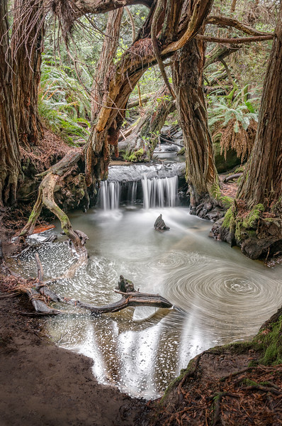 Redwood Waterfall, Sea Ranch, California