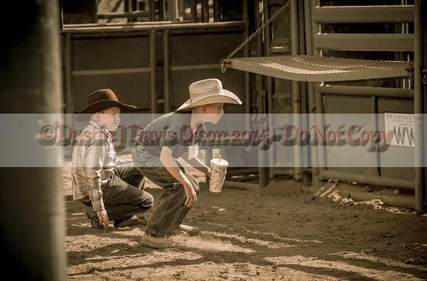 Stars & Strips 2014 Bull Ride