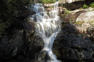 April 2012  Smoky Mountains National Park (Ramsey Cascades Trail)