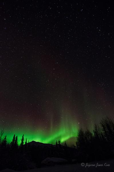 USA-Alaska-Wiseman-Aurora-2805.jpg