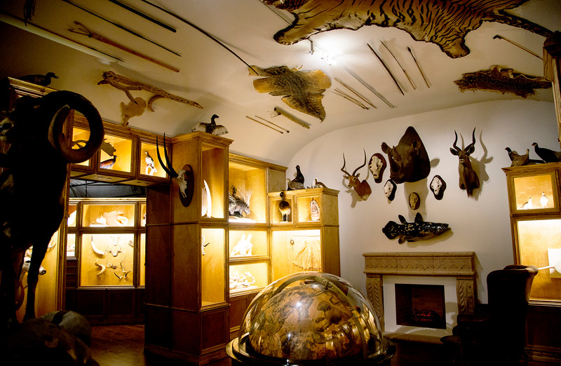 More of the Cabinet of Curiosities