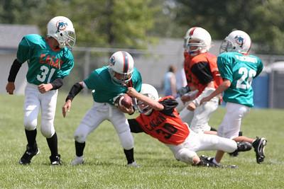 5/6 Dolphins vs. Bengals