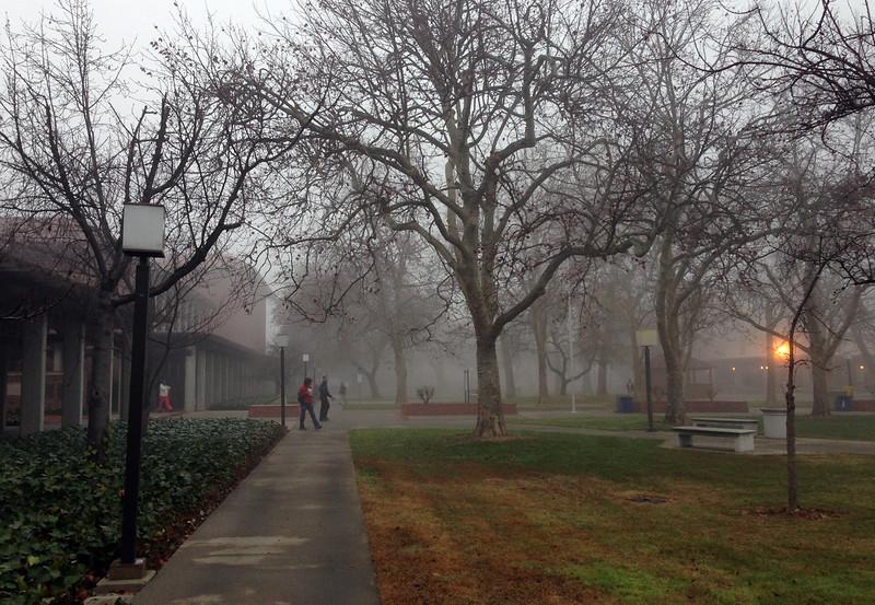 foggy campus.jpg