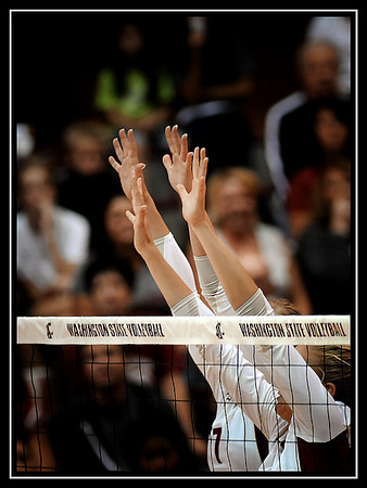 WSU Volleyball