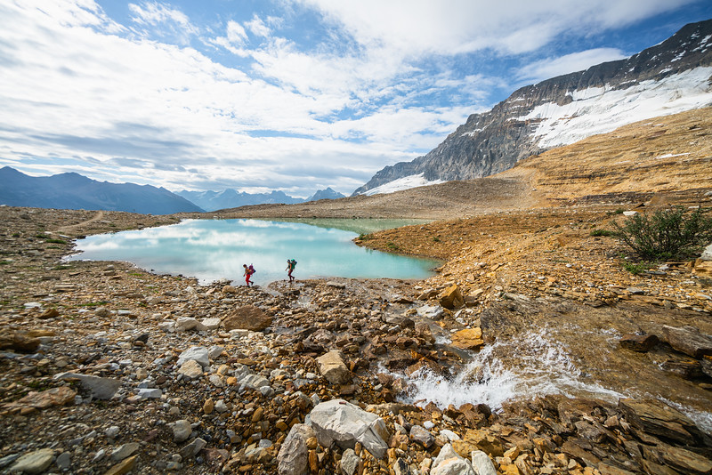 Hiking Iceline Trail, the Whaleback, and Little Yoho Valley
