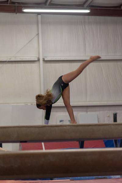 Brianna Gymnastics-0253.jpg