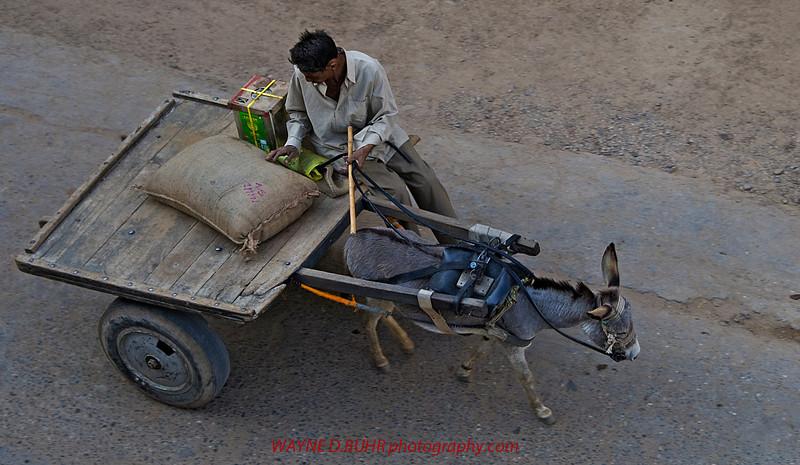 India2010-0204A-432A.jpg