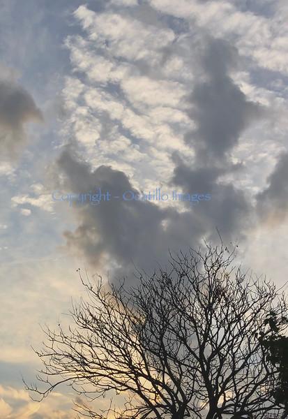 Skyoct8.jpg