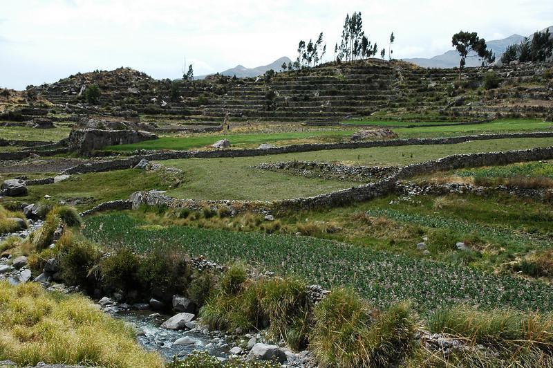 Peru Ecuador 2007-043.jpg