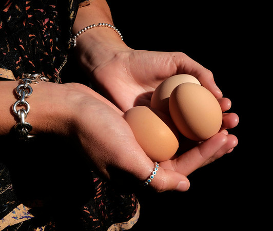 9/19/19: Egg Gathering