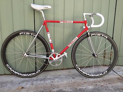 Shane Sutton's Falcon Track