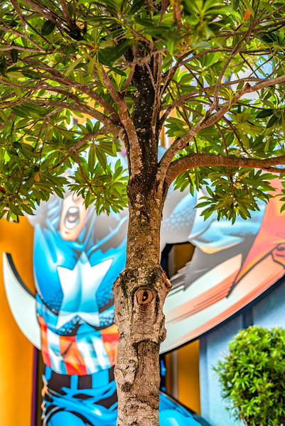Urban Tree With Captain America