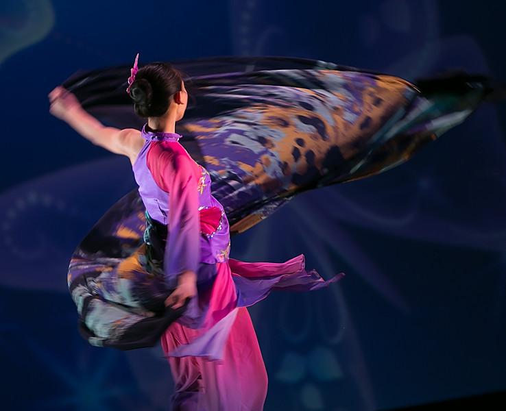 蝶之灵 Spirit of Butterfly