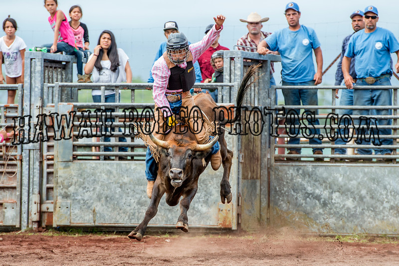JUNIOR BULL RIDING