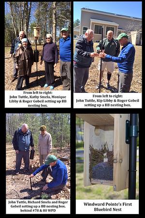Bluebird Nesting Boxes