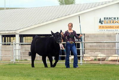 Beef Showmanship Sunday