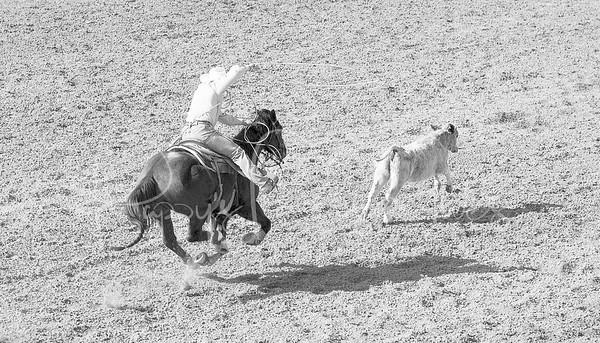 La Fiesta de los Vaqueros (Tucson Rodeo) 2014