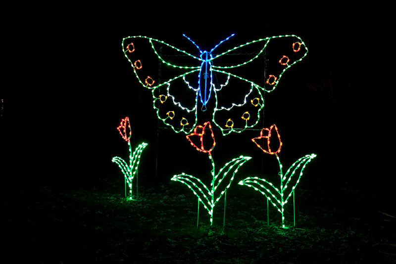 National Zoo's first ZooLights display