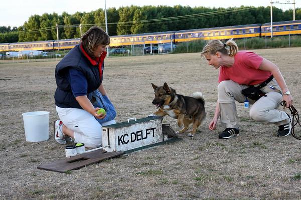 Flyball-probeersel 31 juli 2006