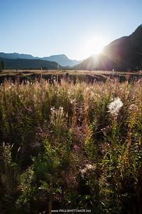 2015-08-08, Hiking Bare Mountain