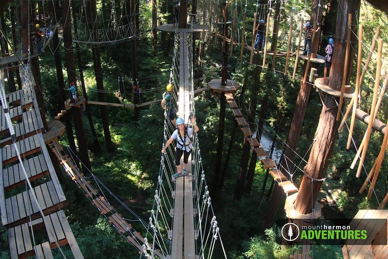 sequoiaportrait_1473456121391.jpg