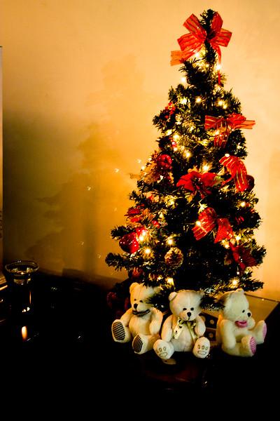 christmas-home