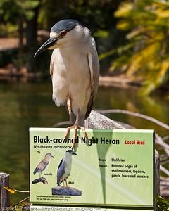 San Diego Zoo's Safari Park—John