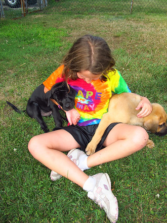 Girl with Puppies, Coaldale (7-24-2012)