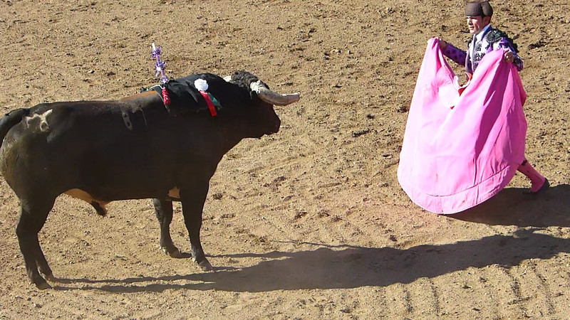 Video of the matadore distracting the bull so that Cavaleiro Luis Rouxinol can come in quickly and place the third bandarilhas.