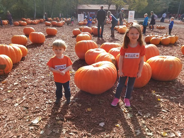 Burts pumpkin