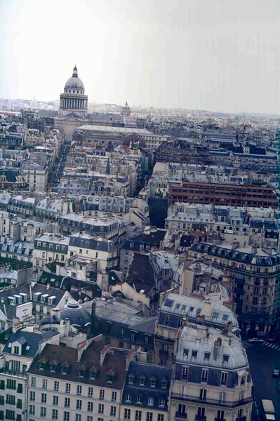 View from Notre Dame.jpg