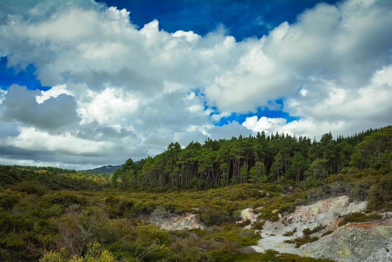 Rotorua-17.jpg