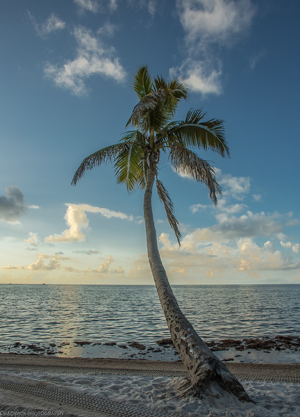 KEY WEST-288-HDR.jpg
