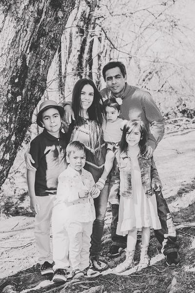 lizandfamily-95.jpg