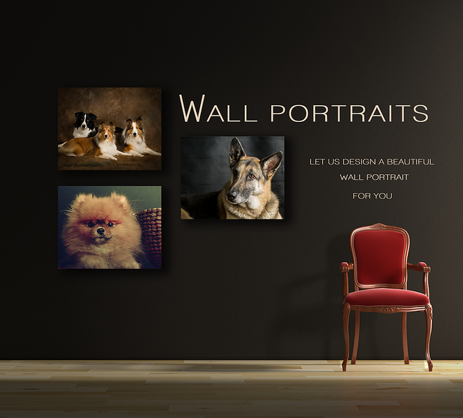 Wall Portraits Page.png